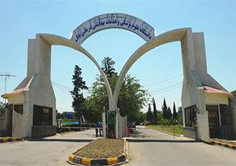 معرفی جناب آقای دکتر علی ذبیحی بعنوان مدیر گروه آموزشی پرستاری دانشگاه